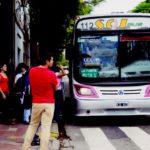 ¿Cómo solucionar la crisis del transporte interurbano?