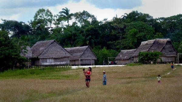 Covid-19 amenaza la existencia de pueblos indígenas en Brasil