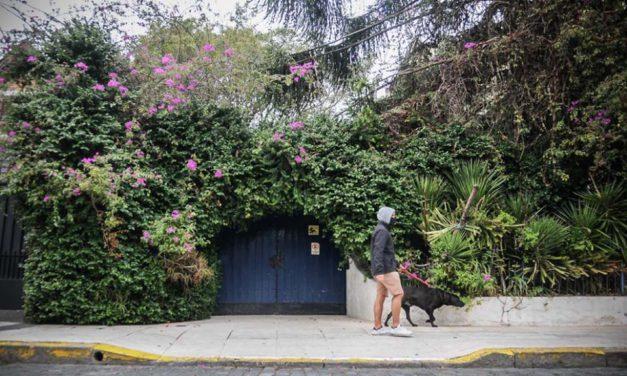 Identificaron un centro clandestino de detención en la calle Bacacay