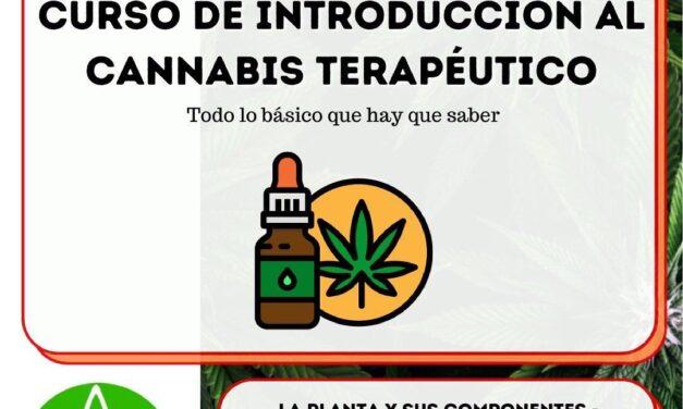 taller de actualización en Salud Mental y Cannabis Terapéutico