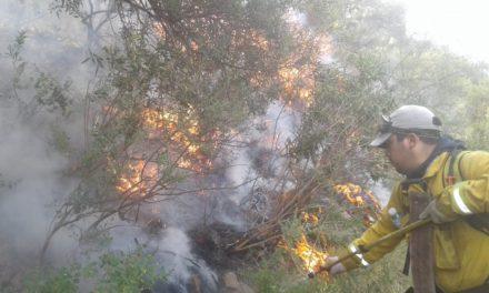 Incendio entre Nogolí y Valle de Pancanta: las llamas continúan y se ubican en una zona inaccesible