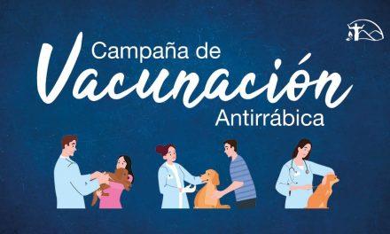 Campaña gratuita de vacunacion antirrabica