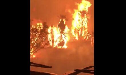 Un gran incendio azota Papagayos